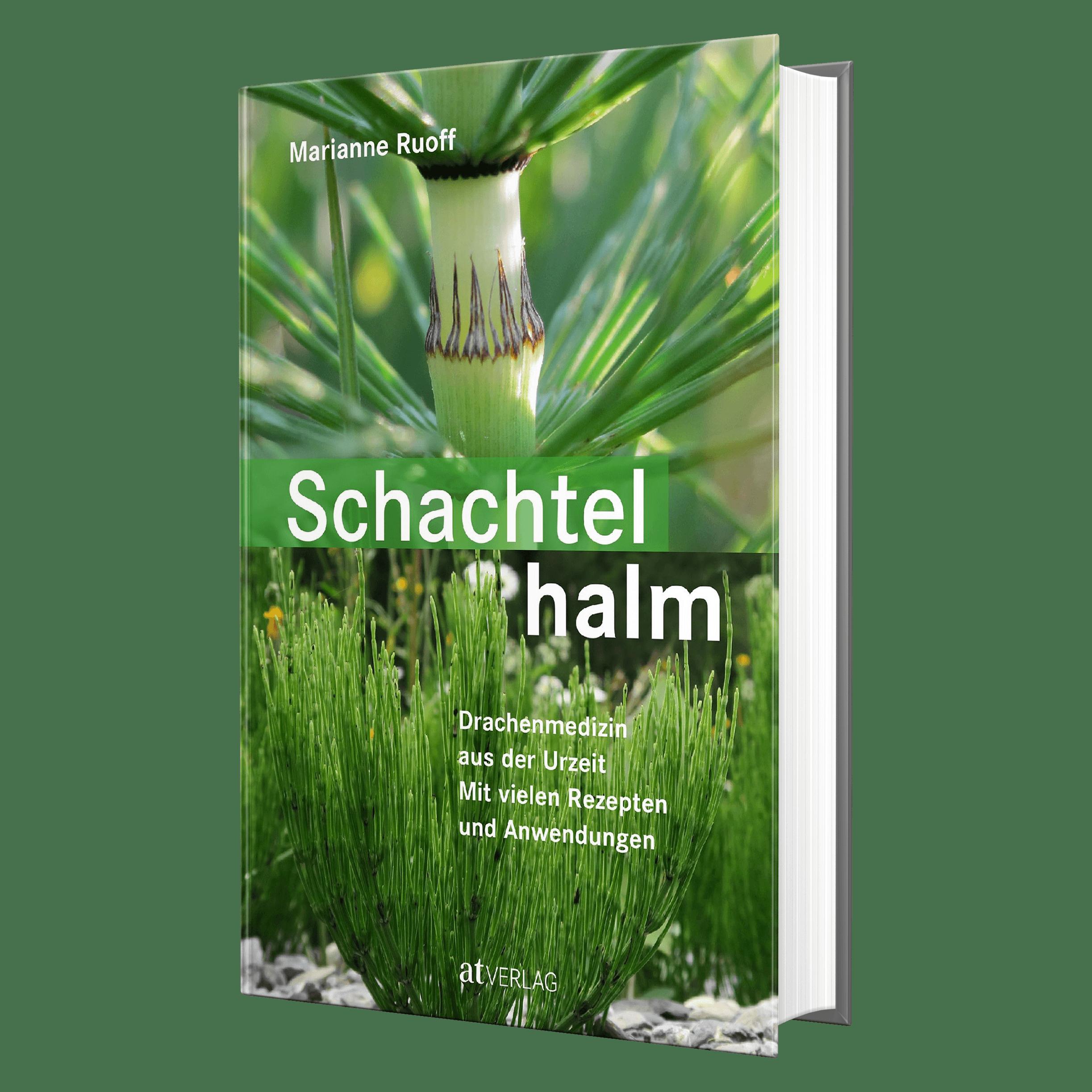 Schachtelhalm - Ruoff