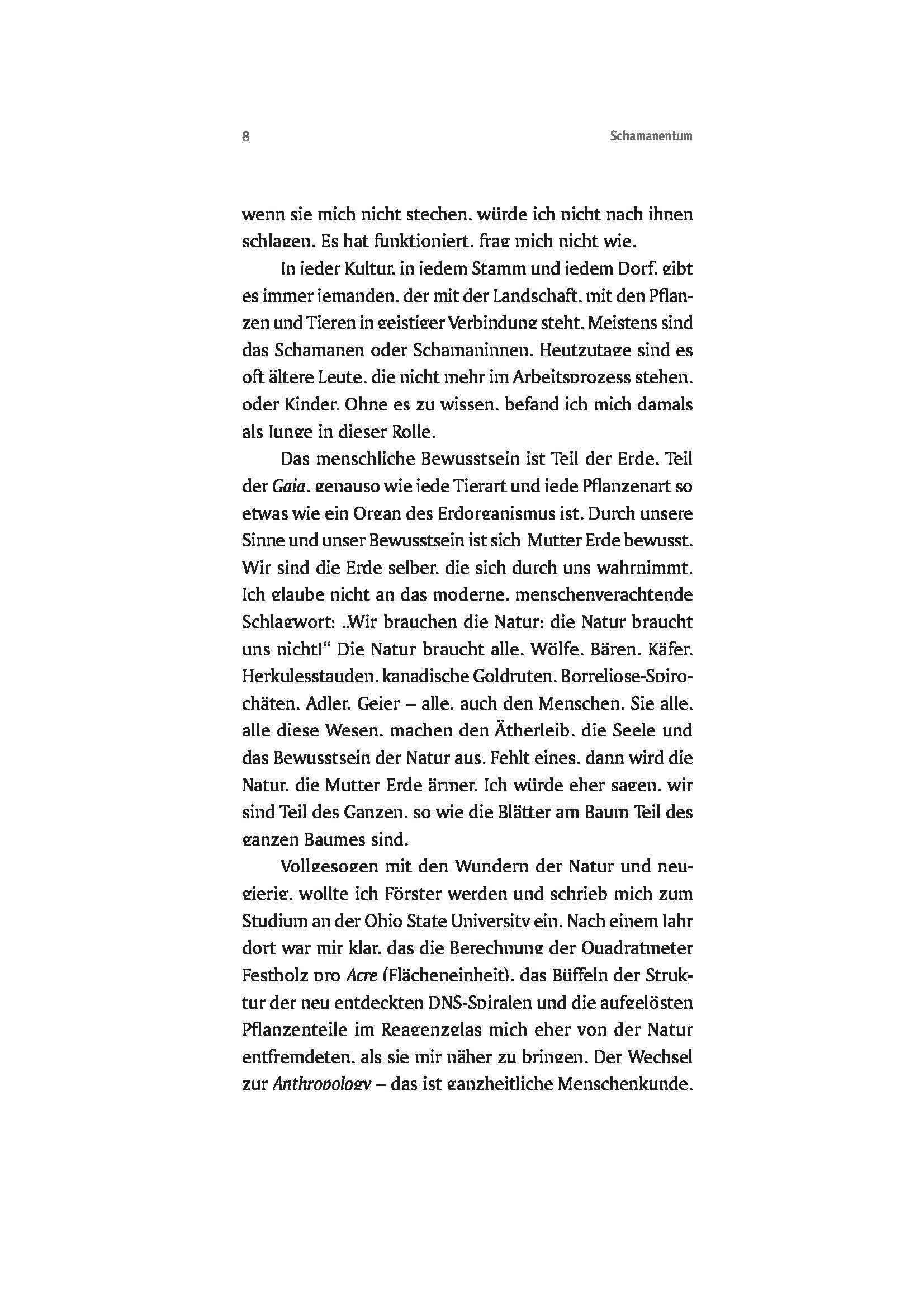 Leseprobe Schamanentum_Seite_08