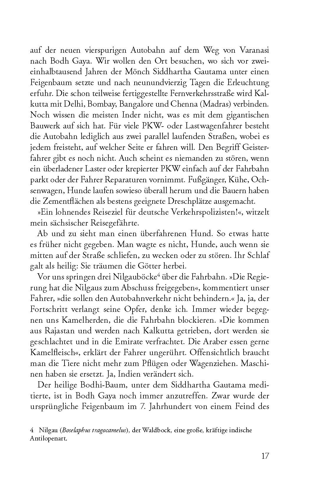 Leseprobe Streifzüge am Rande Midgards_Seite_15
