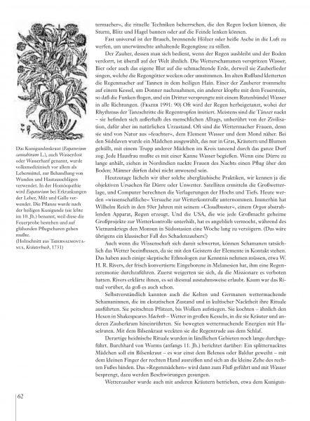 Hexenmedizin_Leseprobe_es_Seite_12