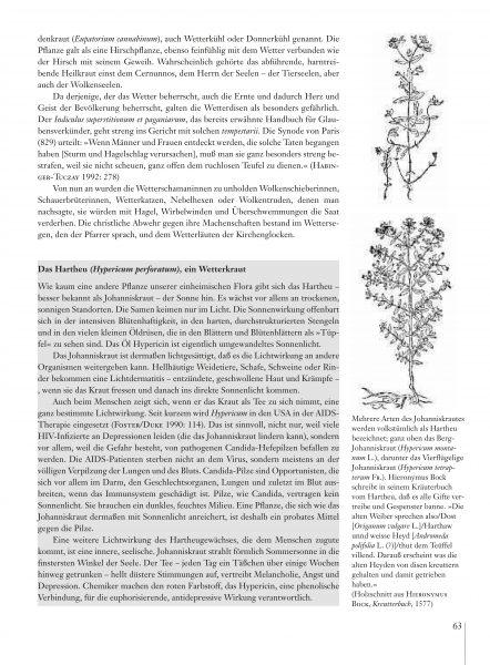 Hexenmedizin_Leseprobe_es_Seite_13