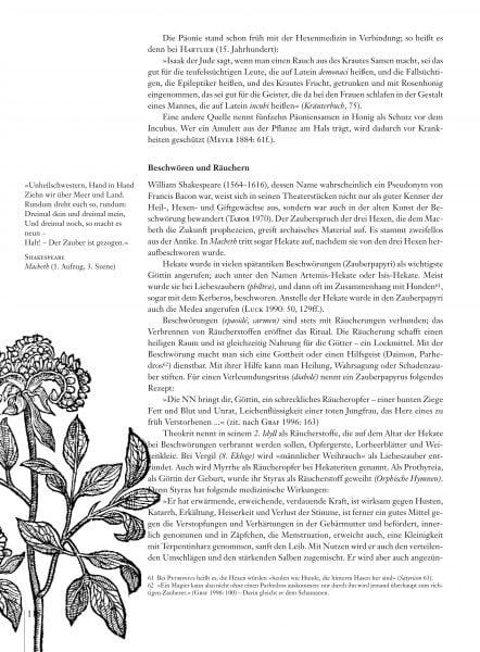 Hexenmedizin_Leseprobe_es_Seite_18