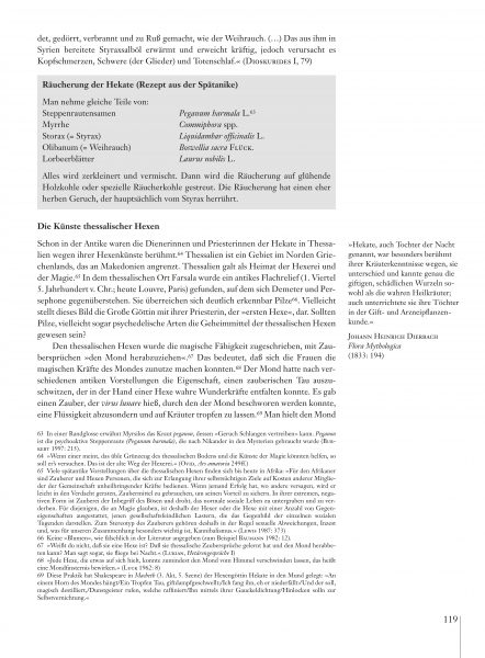 Hexenmedizin_Leseprobe_es_Seite_19