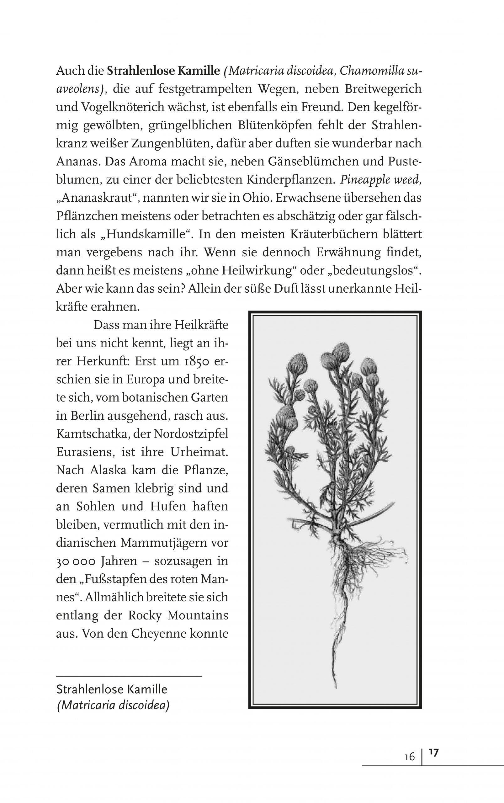 Leseprobe Mit Pflanzen verbunden_Seite_15