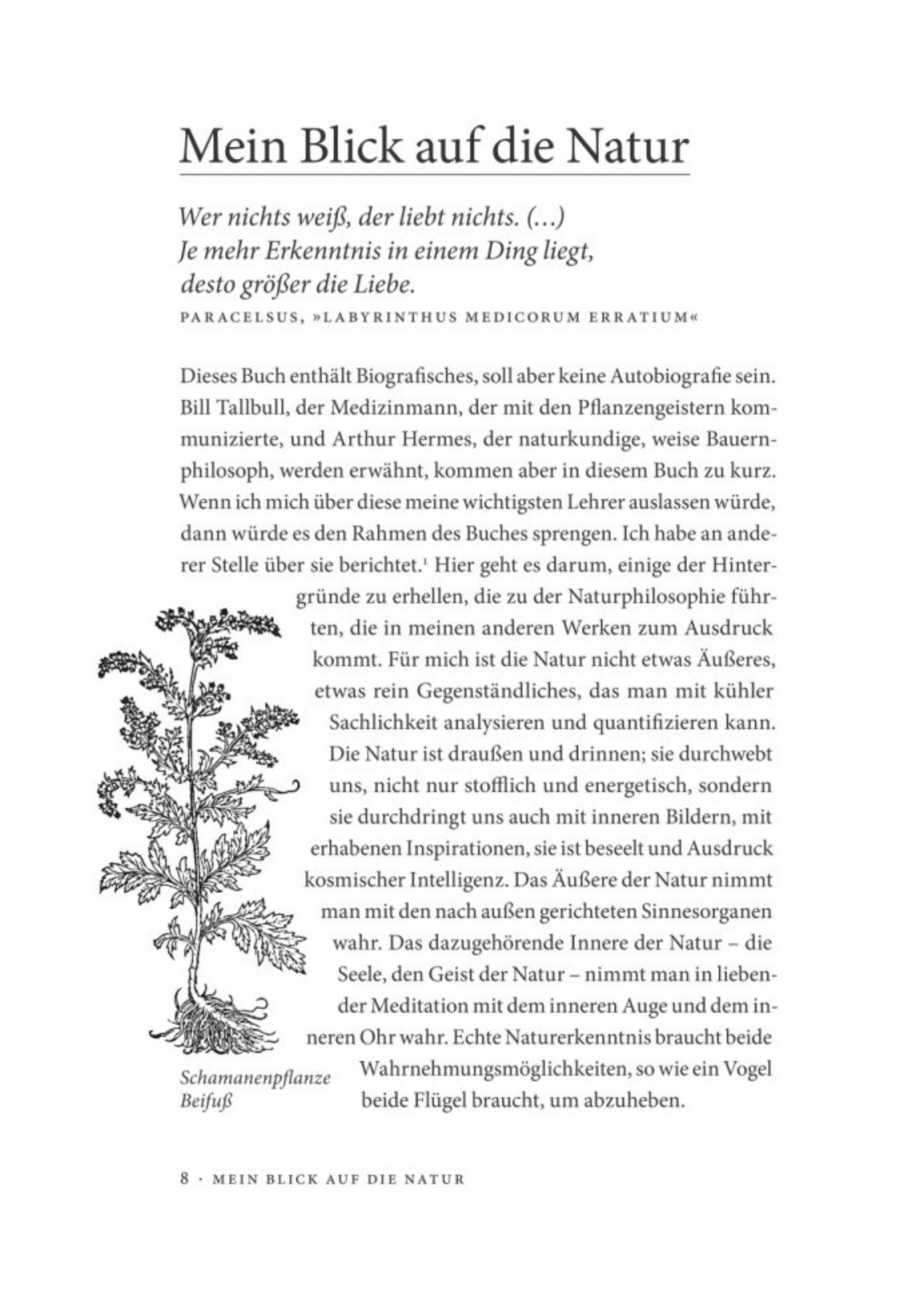 Leseprobe ich bin ein Teil des Waldes_Seite_07