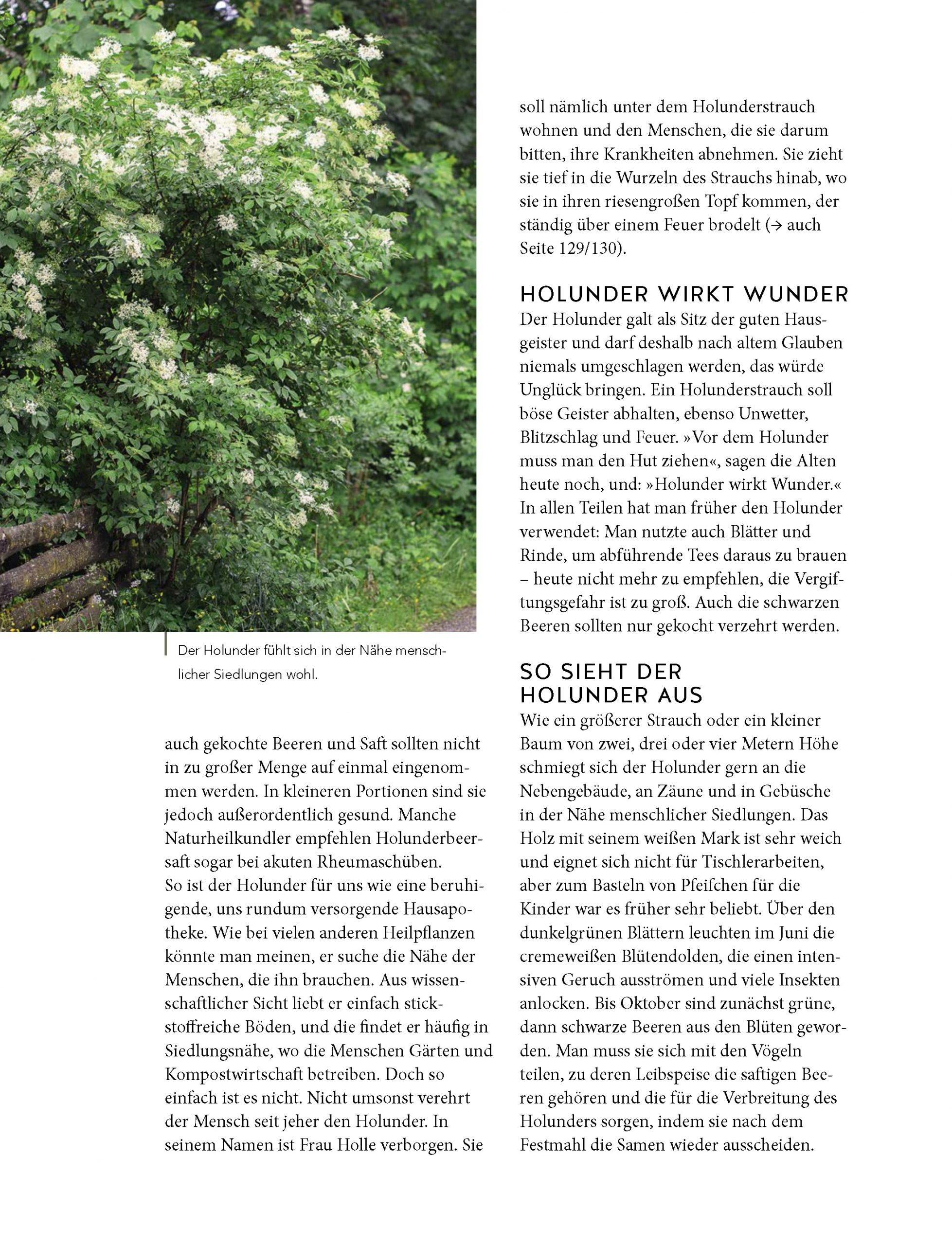 Leseprobe_Einzelseiten _Seite_06