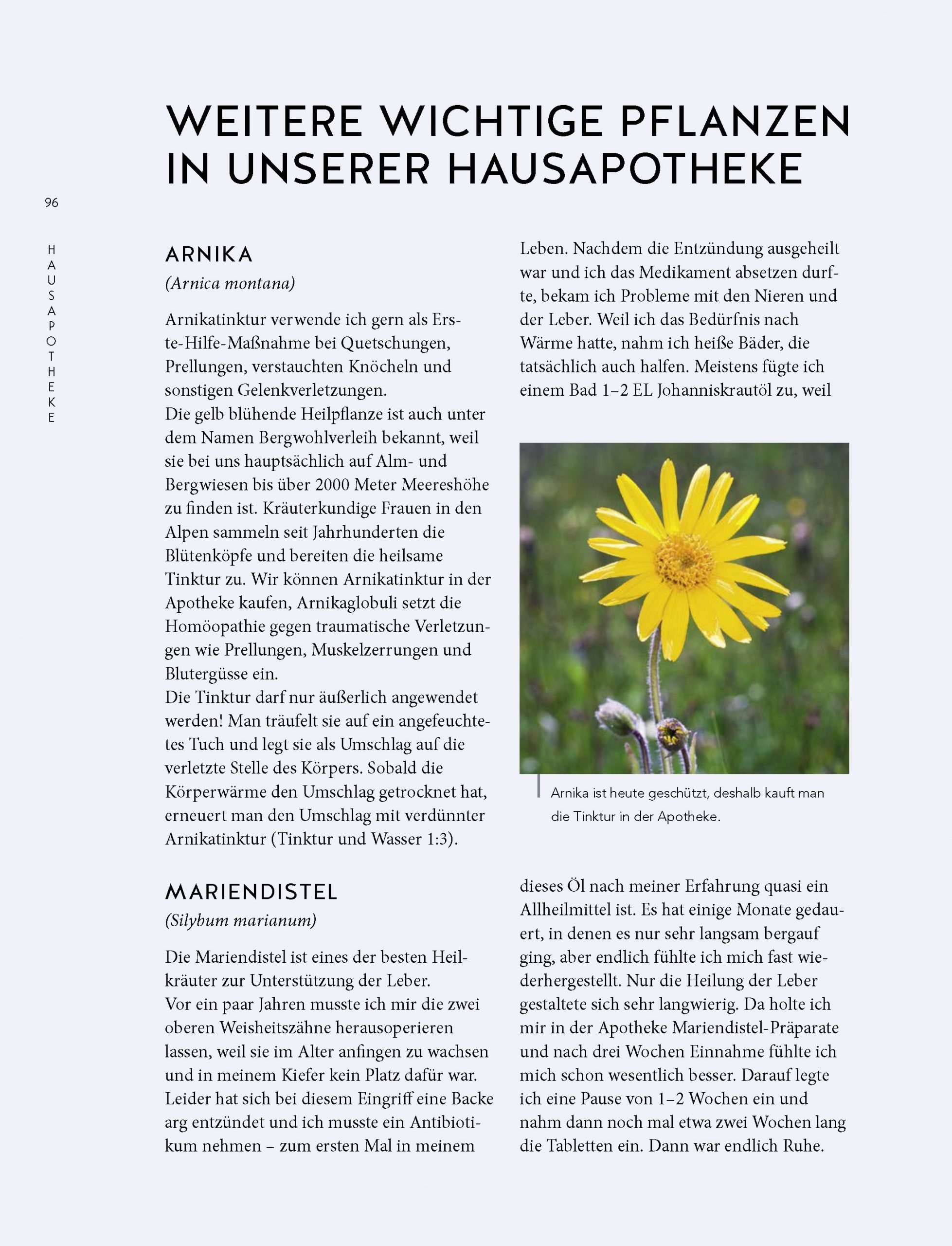 Leseprobe_Einzelseiten _Seite_08