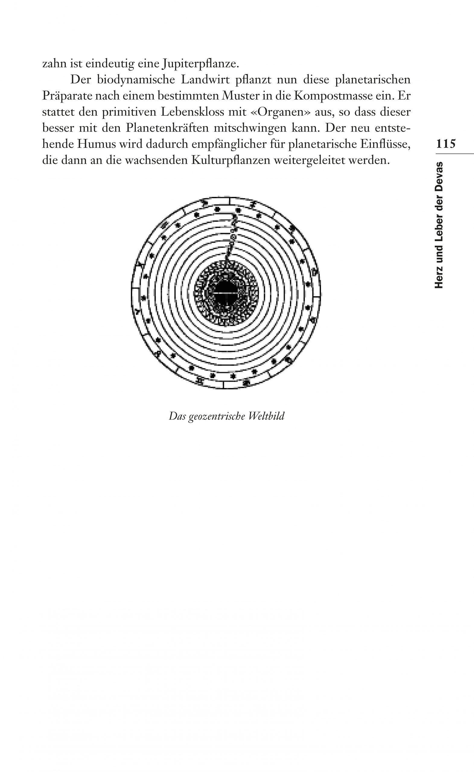 Leseprobe_Seite_17