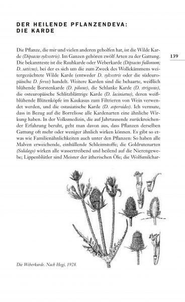Leseprobe_Seite_18