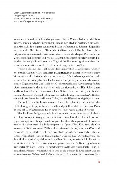 Wolfsmedizin_Look_Inside_Seite_12