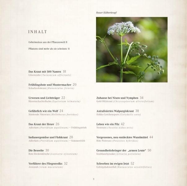 Seele der Pflanzen Leseprobe_Seite_02