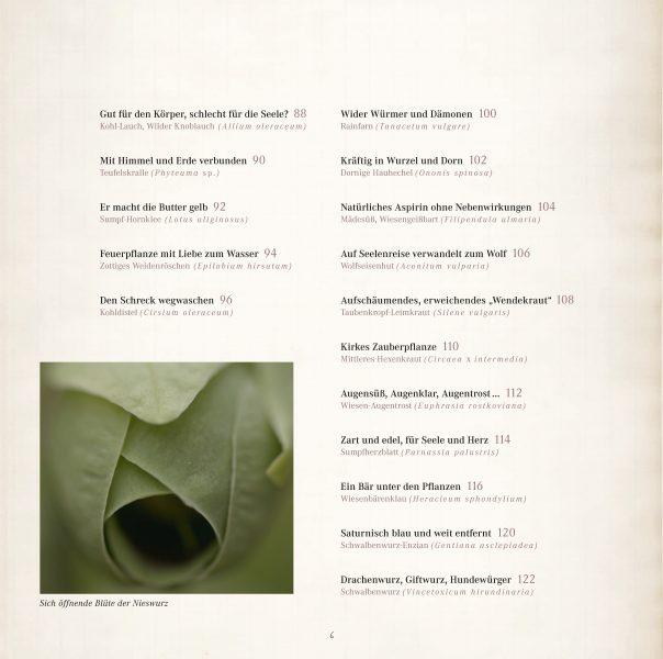 Seele der Pflanzen Leseprobe_Seite_04